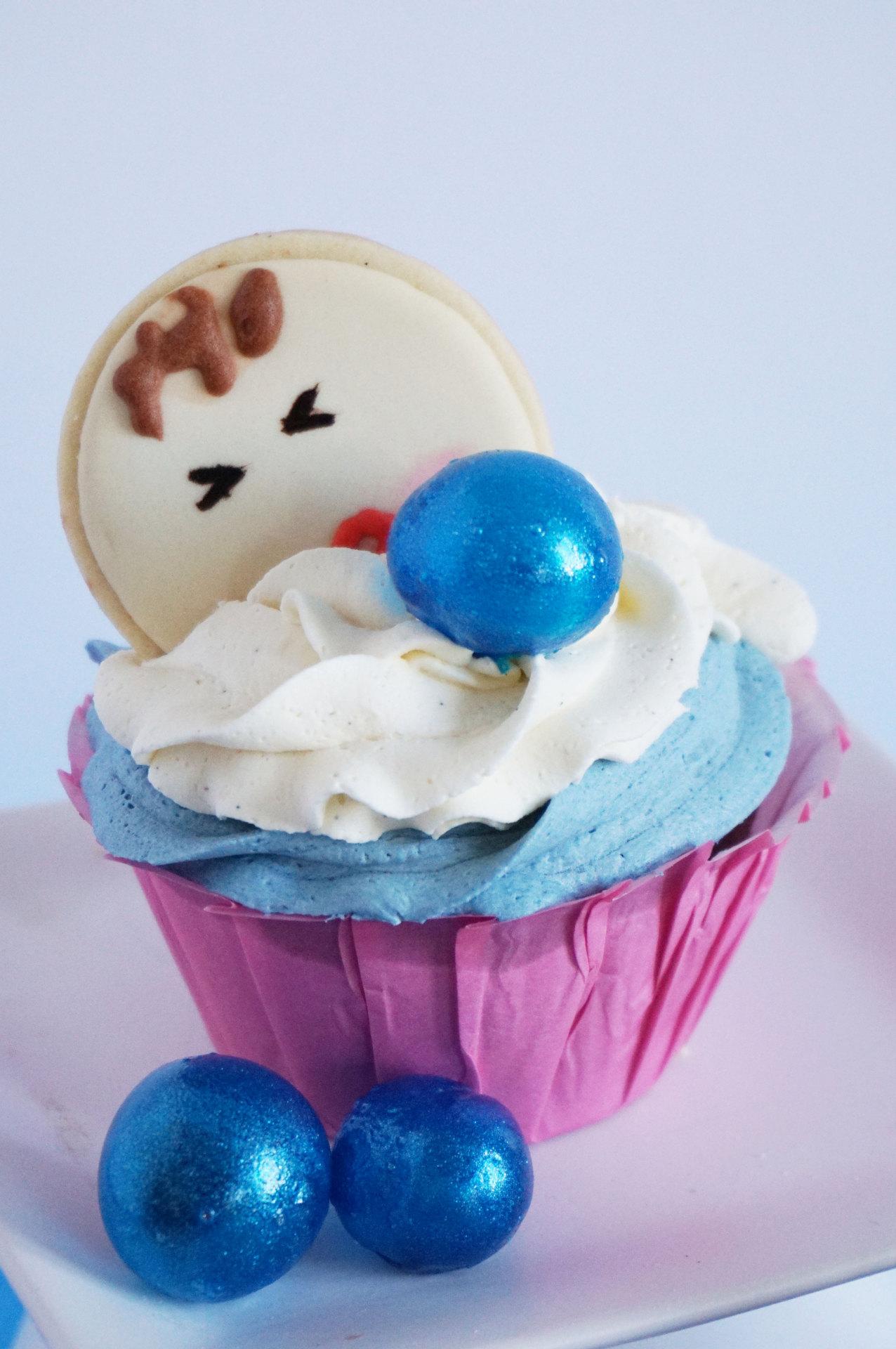 2014-12-01 10h35m47s CupcakesNenucoBaja 004