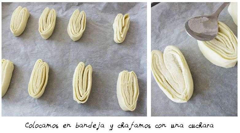 palmeras5